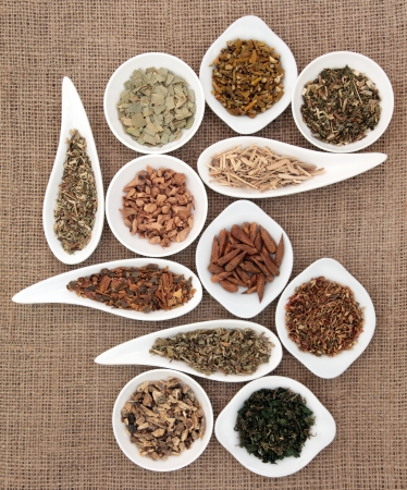 Medicinal herb selection also used in magical potions over hessian background  Stock Photo - 18424172