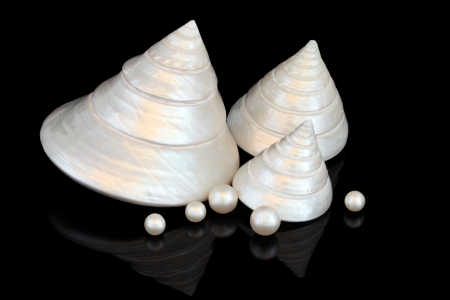 Mother of pearl seashell group with loose pearls over black background Stock Photo - 18571114
