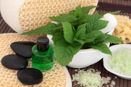 Spa and aromatherapy accessories with mint herb leaf sprigs Stock Photo - 18881743