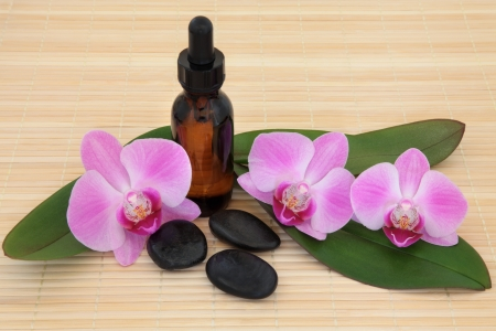 Spa stones and aromatherapy essential oil bottle with orchid flower heads  and leaf sprigs Stock Photo - 18867231