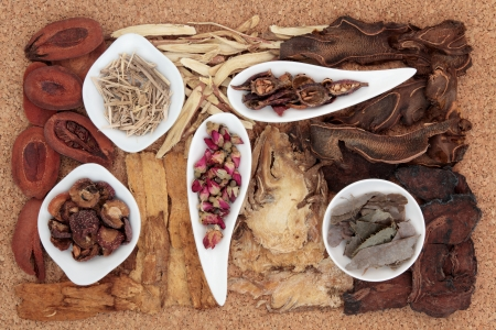 remedy: Chinese traditional herbal medicine selection over cork background