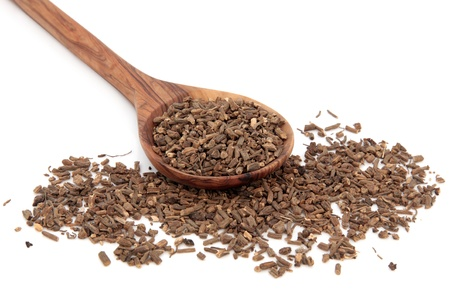 Valerian herb root in an olive wood spoon over white background  Valeriana