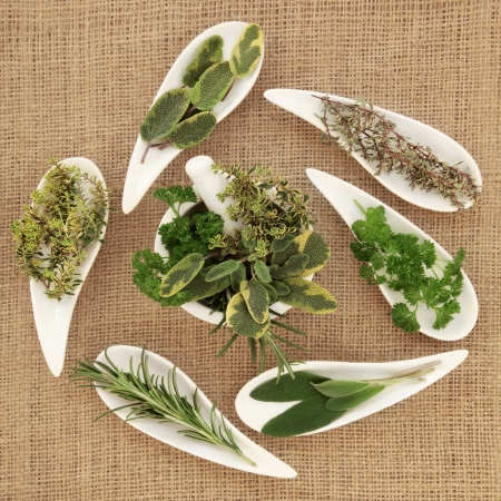 Herb leaf sprigs pf parsley, sage, rosemary and thyme  in white porcelain dishes and a mortar with pestle over hessian background Stock Photo - 19021738