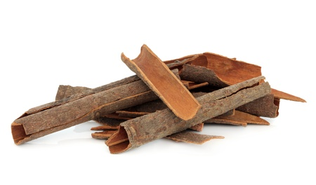 Cassia bark cinnamon spice over white background also used in chinese herbal medicine