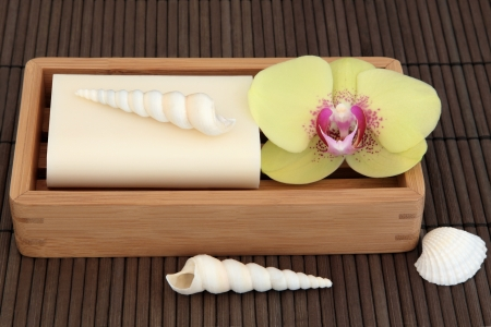 sensitive skin: Natural soap for sensitive skin in a wooden dish with orchid flower and sea shells over bamboo background  Stock Photo