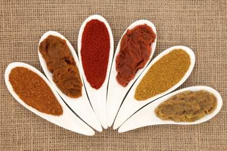 Curry powder and paste varieties in white porcelain leaf shaped dishes over hessian background  Stock Photo - 19317718