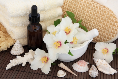 philadelphus: Bathroom accessories with aromatherapy essential oil bottle and mock orange flower blossom and shells