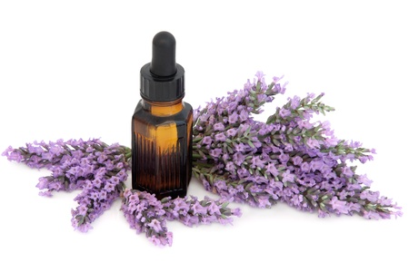 essential oil: Lavender herb flower sprigs with aromatherapy essential oil bottle over white background