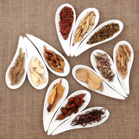 Chinese herbal medicine in white porcelain dishes over hessian background