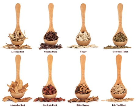 Chinese herbal medicine ingredients in olive wood spoons over white background with titles.