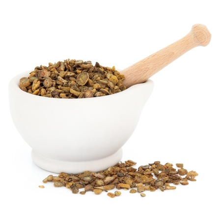 corydalis: Chinese herbal medicine with corydalis tuber in a stone mortar with pestle over white background