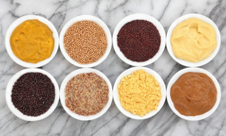wholegrain mustard: Mustard selection of powder, seed, french, dijon, english and wholegrain in white porcelain bowls over marble background
