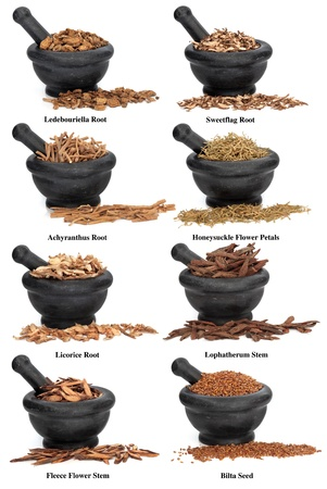 corydalis: Large chinese herbal medicine ingredients in marble mortars with pestles over white background, with titles Stock Photo