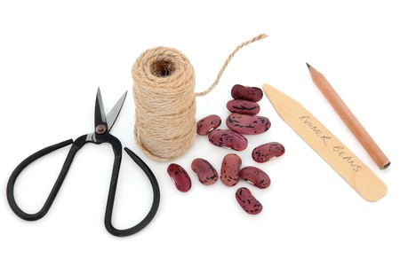 runner bean: Runner bean seed sowing equipment of string, pencil, wooden labels and scissors over white background