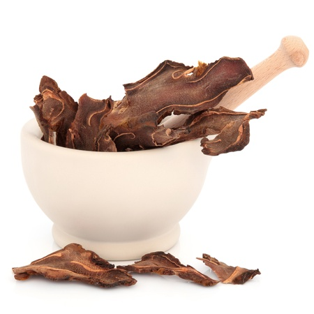chinese herbal medicine: Chinese herbal medicine cibot tuber in a stone mortar with pestle over white background