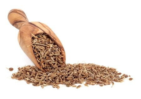 aniseed: Aniseed spice in an olive wood scoop over white background