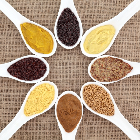 wholegrain mustard: Mustard selection of powder, seed, french, dijon, english and wholegrain in white porcelain spoons over hessian background