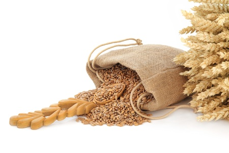 hessian bag: Wheat grain in a hessian bag with wooden spoon over white  background