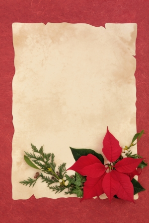 Poinsettia flower, mistletoe, ivy and pine leaf border over parchment and red mottled background  photo