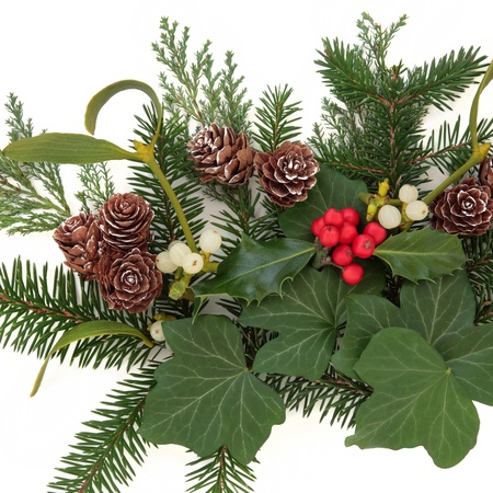 Christmas floral arrangement with holly, ivy, mistletoe, pinecones and winter greenery over white background  photo