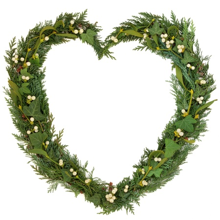 Christmas heart shaped floral wreath with mistletoe, ivy, and cedar leaf sprigs over white background  photo