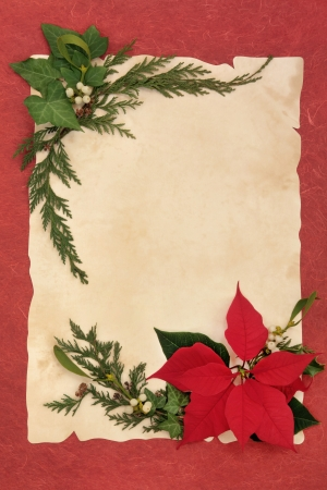 Christmas and thanksgiving poinsettia flower with winter greenery over parchment and red  background  photo