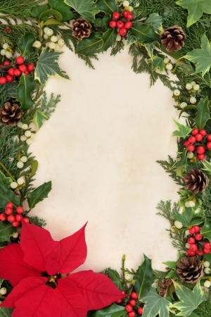 Poinsettia flower thanksgiving border with holly, ivy and mistletoe over old parchment background  photo