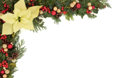 poinsettia: Christmas floral background border with poinsettia flower, baubles, holly, mistletoe, ivy, fir leaf sprigs and pine cones over white