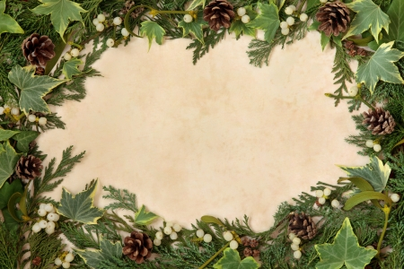 Christmas background border with mistletoe, ivy, winter greenery and pine cones over old  parchment  photo