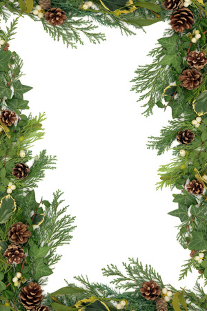 Christmas and winter floral border with mistletoe, ivy, holly and winter greenery over white background