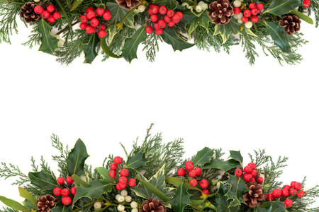 christmas ivy: Christmas floral border with holly, ivy, mistletoe, pine cones and winter greenery over white background  Stock Photo