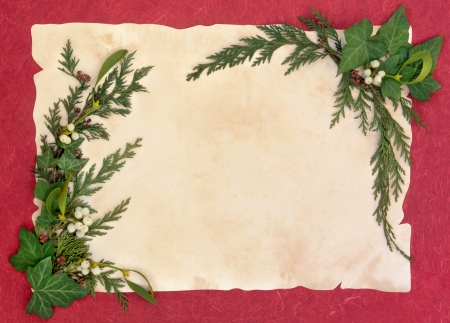 Christmas and winter border of mistletoe, ivy, cedar leaf sprigs and pine cones over old parchment and red background  photo