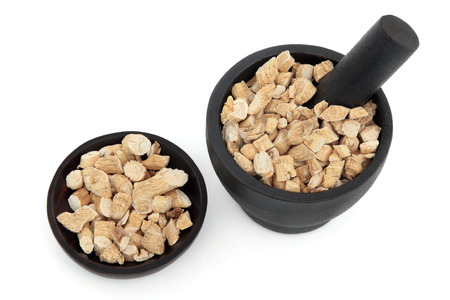 herbology: Korean ginseng chinese herbal medicine in a mortar with pestle and bowl  Panax schinsen, ren shen