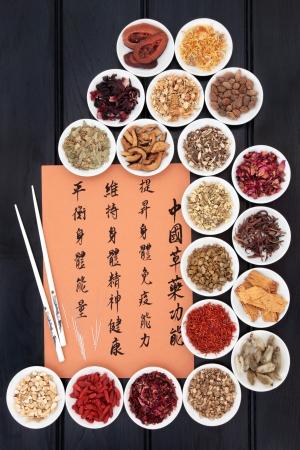 acupuntura china: Colecci�n de la medicina herbal tradicional china y las agujas de acupuntura con mandarina escritura de la caligraf�a Traducci�n describe las funciones para aumentar la capacidad del cuerpo para mantener el cuerpo y el esp�ritu de la salud y para equilibrar la energ�a
