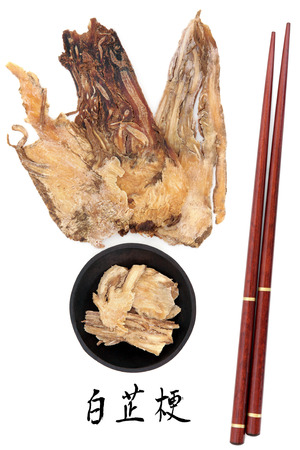 angelica sinensis: Angelica herb root used in traditional chinese herbal medicine with mandarin title script translation and chopsticks  Dang gui  Stock Photo