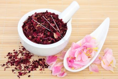 Chinese herbal medicine with acupuncture needles and fresh and dried peony flowers  Fuguihua  Stock Photo