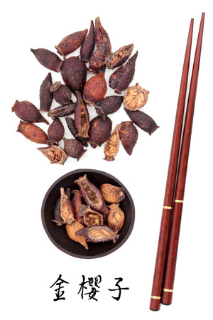 chinese herbal medicine: Cherokee rose hip fruit used in traditional chinese herbal medicine with mandarin title script translation and chopsticks  Jin yin zi