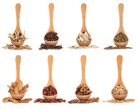 Chinese herbal medicine ingredients in olive wood spoons over white background