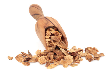 chicory coffee: Chicory root herb in an olive wood scoop over white background
