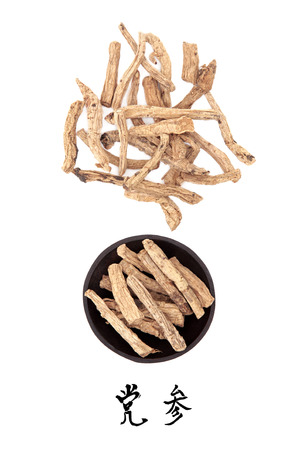 codonopsis roots: Codonopsis root used in traditional chinese herbal medicine with mandarin title script translation  Dang shen  Stock Photo