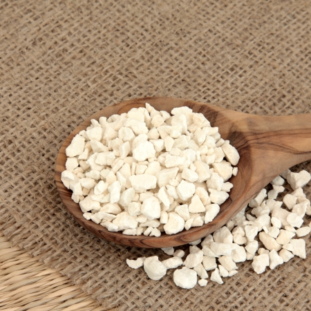 Poria cocus mushroom used in chinese herbal medicine in a wooden spoon over hessian background  Fu ling  Wolfiporia extensa