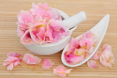 herbal remedy: Peony flower petals used in chinese and natural alternative herbal medicine  Paeonia  Fuguihua