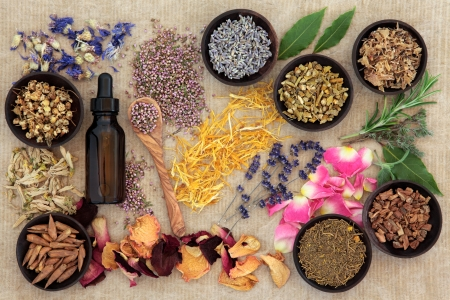 Herbal naturopathic medicine selection also used in pagan witches magical potions over old paper background  photo