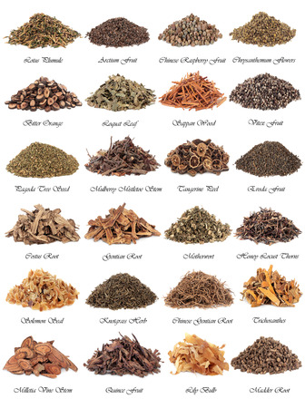 plant medicine: Chinese herbal medicine selection over white background with titles  Stock Photo