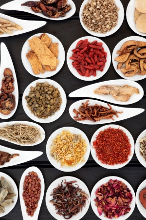 chinese herbs: Chinese herbal medicine selection in white china bowls