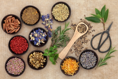 Herbal medicine selection also used in pagan witches magical potions over old paper