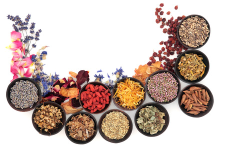 alternative medicine: Medicinal herb selection also used in witches magical potions over white Stock Photo