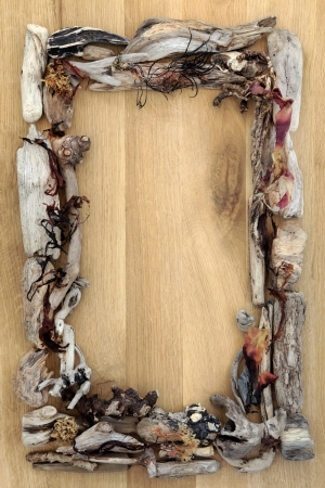 driftwood: Seaweed and driftwood abstract border over oak wood