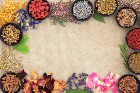 Medicinal herb selection also used in witches magical potions over old paper background. photo