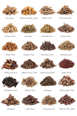 traditional remedy: Chinese herbal medicine selection over white background with titles. Stock Photo